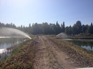 Pumps installed at the Talkeetna sewer lagoon to introduce more oxygen into the system.  Photo:  Terry Dolan - Mat-Su Borough