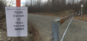 The gate to trails in Talkeetna Lakes Park is temporarily closed due to muddy conditions. Photo: Katie Writer, KTNA