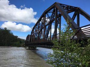 High water near the Talkeetna railroad bridge.  Photo by Katie Writer - KTNA
